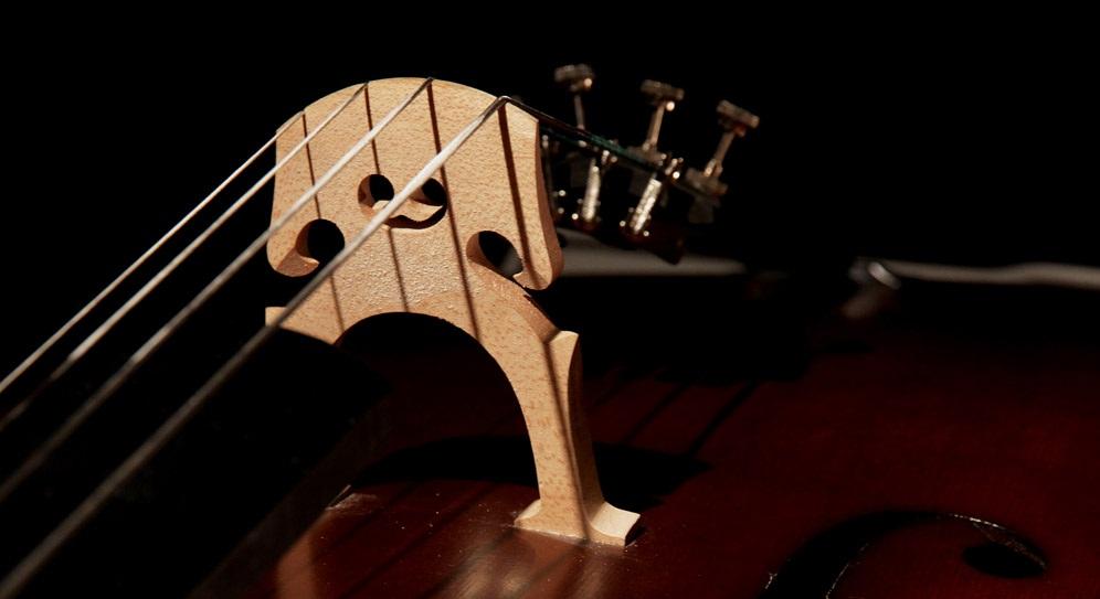 大提琴曲:天鹅 出自圣桑的《动物狂欢节》.